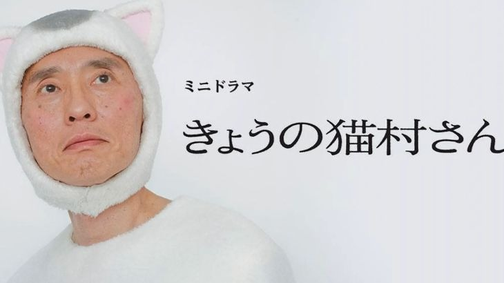 ドラマ【きょうの猫村さん】見逃し動画を無料フル視聴する方法